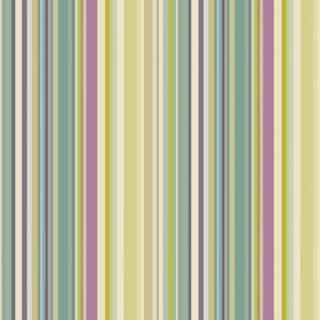 Printed Stripe 005