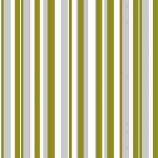Printed Stripe 006