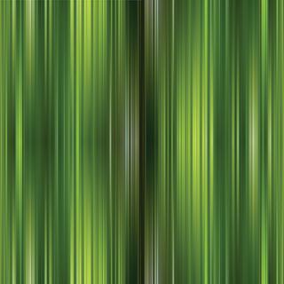 Printed Stripe 014